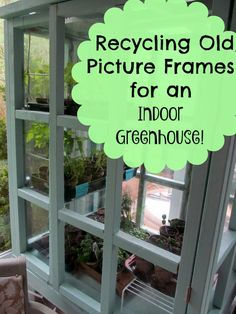 Recycle old, unused picture frame glass into a great indoor greenhouse perfect for starting lots of seeds and keeping plants safe from pets!