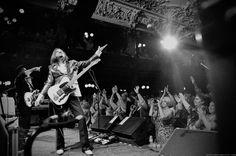 Eddie Perez - The Mavericks - Mono Mundo Tour - 2015 - photo by Bonnie Blue Britt