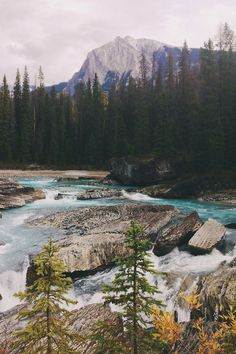 Kicking Horse River, Yoho National Park, Canada.
