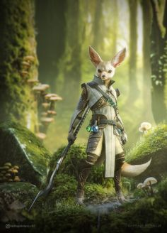 Fennec Fox, Awesome work from : Fox Character, Character Portraits, Fantasy Character Design, Character Design Inspiration, Fox Fantasy, Fantasy Races, Fantasy Art, Dnd Characters, Fantasy Characters