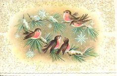 Very pretty. #birds #vintage #Christmas #cards