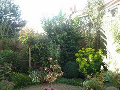 Mijn tuintje