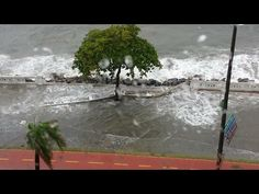 De ressaca, mar avança sobre mureta na Ponta da Praia