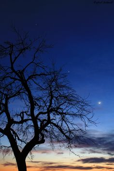 Beautiful conjuction: Jupiter, Venus and the Moon. The twilight have few cloud. The clouds push up the conjuction beauty level. :-)
