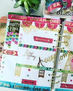a closer look at the first half of this week's spread   #planner #plannergirl #plannerlife #plannerlove #planneraddict #plannerjunkie #plannergoodies #plannercommunity #happyplanner #erincondren #filofax #kikik #tassel #paperclip #washitape #plannerdashboard #planneraccessories #plannerobsessed #plannernerd #etsy #plannerclips #paperclips  #etsy #etsyshop #weeklylayout #weeklyspread by sweetpaperbliss