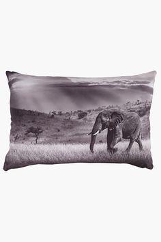 Digital Print Elephant Scatter Cushion, - Cushions, Covers &am