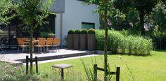 martin veltkamp tuinen / minimalistische villatuin aan de rand van zoetermeer