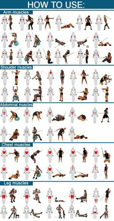 Quick tip exercise guide for exercising muscle groups - which activity works which muscles