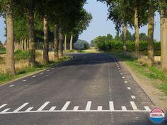 Battenoordsedijk Nieuwe Tonge (jaartal: 2000 tot 2010) - Foto's SERC