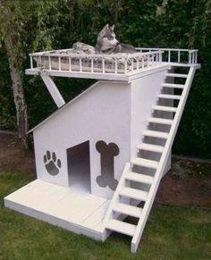 Dog Summer House