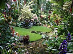 Dennis Hundscheidt's tropical garden, Brisbane, Qld