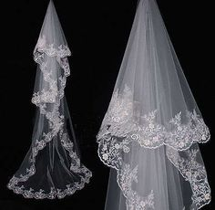 "116"" Charming Elegant Cathedral Wedding Bridal Veil Chic Lace Edge Long Train in Clothes, Shoes & Accessories, Wedding & Formal Occasion, Bridal Accessories 