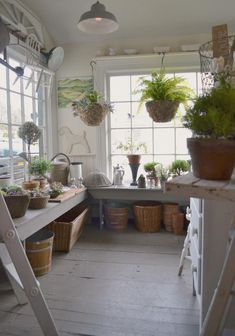 Potting shed.I def want some indoor plants hanging in my garden shed and paint the interior a bright color. Greenhouse Shed, Greenhouse Gardening, Greenhouse Tables, Indoor Greenhouse, Vegetable Gardening, Shed Conversion Ideas, Farmhouse Garden, Modern Farmhouse, Farmhouse Decor