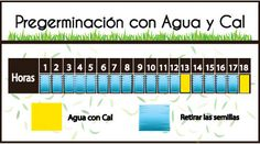 Guia: Producción Intensiva de Forraje Verde : .: Hydro Environment .: Hydroponics, Periodic Table, Environment, Mexico, Pest Control, Irrigation, Agriculture, Periotic Table, Environmental Psychology