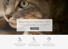 Výroba webových stránek www.veterinarni-klinika.net dokončena!