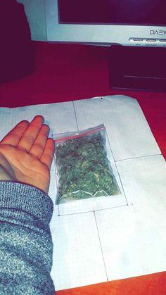 420 Smoke weed every day