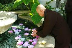 EQUILÍBRIO: Sorria, Thich Nhat Hanh
