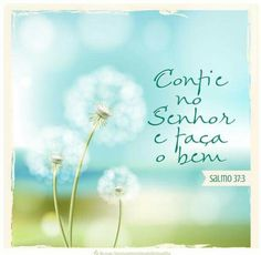 Trust - Salmos 37.3