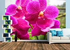 Wands, Design, Pictures, Dekoration, Orchids, Wallpapers, Products, Colors, Walls