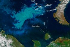 This image of a phytoplankton bloom in the Barents Sea.  http://earthobservatory.nasa.gov/Features/Phytoplankton/
