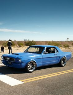Ford Mustang Classic, Mustang 1966, Vintage Mustang, Mustang Fastback, Ford Mustang Shelby, Mustang Cars, Ford Gt, American Classic Cars, American Muscle Cars
