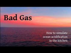 Bad Gas: How to simulate ocean acidification in the kitchen
