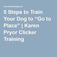 "5 Steps to Train Your Dog to ""Go to Place"" 