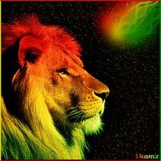 Rasta Colors- Lion by on DeviantArt Art Rasta, Lion Rasta, Reggae Art, Reggae Style, Wallpaper Verde, Lion Live Wallpaper, Bob Marley Legend, Lions Live, Rasta Colors