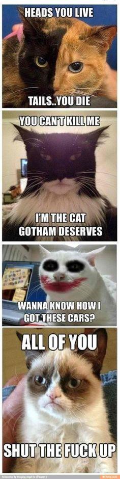 Tard on Batman