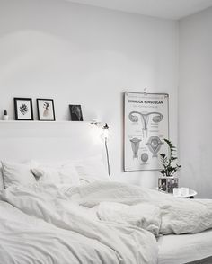 All white home - via cocolapinedesign.com