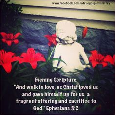 Evening Scripture:  And walk in love, as Christ loved us and gave himself up for us, a fragrant offering and sacrifice to God.. #eveningscripture #scripturequote #biblequote #instabible #instaquote #quote #seekgod #godsword #godislove #gospel #jesus #jesussaves #teamjesus #LHBK #youthministry #preach #testify #pray #sacrifice #love