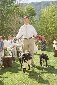 Ring Bearer Dogs in Blush, Mint Bow Ties | Amber Shaw Photography https://www.theknot.com/marketplace/amber-shaw-photography-orem-ut-503464