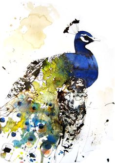 "Lucy Newton; Ink, Mixed Media ""peacock"""