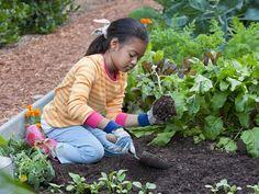 How to Grow an Engaging Learning Environment via @edutopia