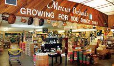 Mercier Orchards in Blue Ridge, GA.  Apples, goodies, bakery, cafe, U-pick, farm tours....lots to do!