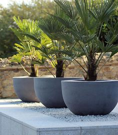 Potential water features.... Urbis Design | Contemporary Concrete Planters and Furniture Idea for: Front drive near garage door - low wide gabion as stand for pots in this shape. Allows drip lines to be fed thru drain unseen into pots and also allows pots to drain if it rains