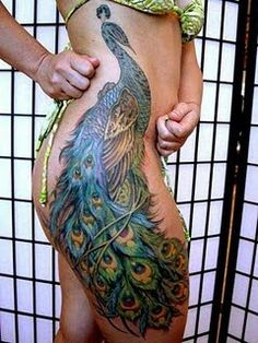 Peacock tattoo. This is gorgeous. Not wanting it, but for those who dig the whole thing- cool placement