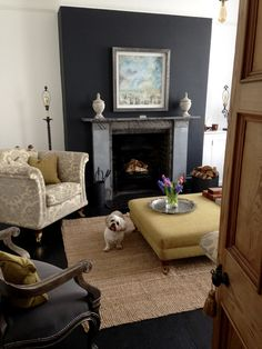 The snug. Blue/Black chimney breast and black painted floorboards using F&B paint. Rescue Lhasa Apso xXx