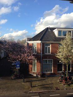Witte vrouwen, Utrecht