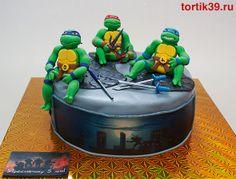 TMNT cake. No Michelangelo.