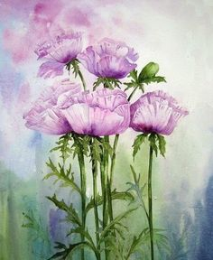 5023 Nejlepsich Obrazku Z Nastenky Kreslene Kvetiny Drawing