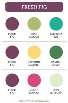 Stampin' Up! fresh fig colour coach swatch Stampin' Up! Card Making Tips, Making Ideas, Paint Color Schemes, Paint Colors, Colours That Go Together, Color Palette Challenge, Fresh Figs, Collor, Color Palate