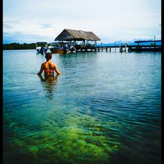 Bocas del toro is paradise -  Panama Clear waters Water Clear Ocean