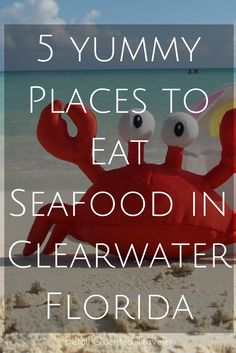 No trip to the beach is complete without eating something from the sea. Here's 5 places to get tasty and satisfying seafood in Clearwater Beach Florida.