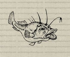 Angler Fish Clipart Vector Instant Download by vectorvintageshop