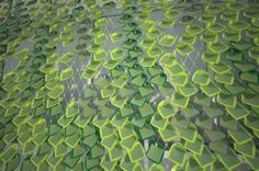 Solar ivy building integrated photovoltaic system. Inspired by the principles of photosynthesis and the growth patterns of ivy, Solar Ivy is a customizable, non-toxic and completely recyclable modular system that brings a technology traditionally restricted to rooftops to almost any architectural surface