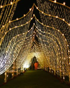[New] The 10 Best Home Decor Ideas Today (with Pictures) - A fragrant tunnel of rajneegadha and diyas ushered guests toward Chavi and Arjans sangeet ceremony . Desi Wedding Decor, Wedding Hall Decorations, Wedding Stage Design, Marriage Decoration, Wedding Mandap, Wedding Receptions, Wedding Table, Wedding Ceremony, Wedding Ideas