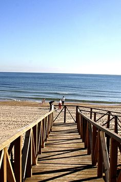 Murcia, Alicante, Beach, Outdoor, Seeds, Outdoors, Seaside, The Great Outdoors