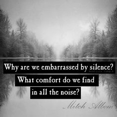"""""""Why are we embarrassed by silence? What comfort do we find in all the noise?"""" ~ Mitch Albom"""