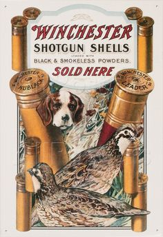 This Winchester Sold Here Bird Hunting Dog Tin Sign features a vintage-style reproduction graphic. Great metal sign for a hunting or shooting cabin. Quail Hunting, Hunting Art, Hunting Guns, Duck Hunting, Hunting Painting, Hunting Stuff, Pheasant Hunting, Hunting Shirts, Archery Hunting